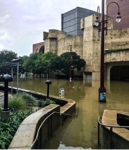 Houston-Hurricane-Harvey-flood-photos-The-Wortham_163519-1